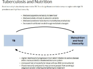 TB and undernutrition